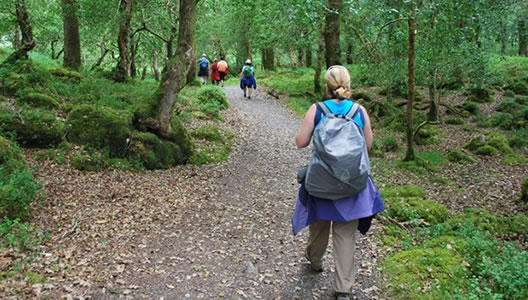 8 Day Guided Walking Holiday in Cork & Kerry