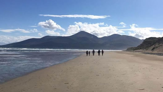 8 Day Guided Walking Tour of Northern Ireland