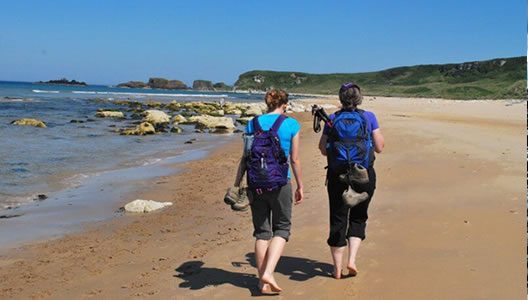 Antrim Causeway Coastal & Rathlin Island Walking Tour