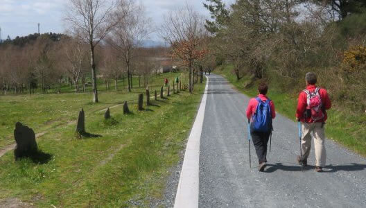 Camino de Santiago French Way Last 200km Walking Hiking Vacation