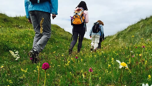 8 Day Self-Guided Walking Tour Donegal Bluestack Way
